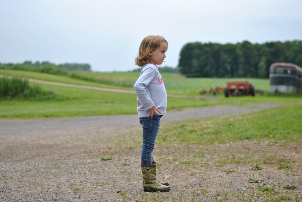 Ready to explore Grandpa's farm.